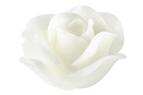 LED dekorace růža